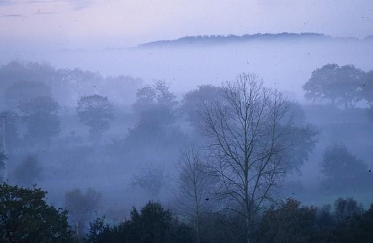 La forêt de Beffou en Loguivy-Plougras en Vallée du Léguer