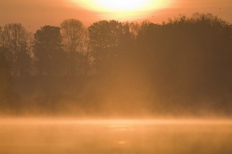 Autour de l'étang de Beffou en Plougras