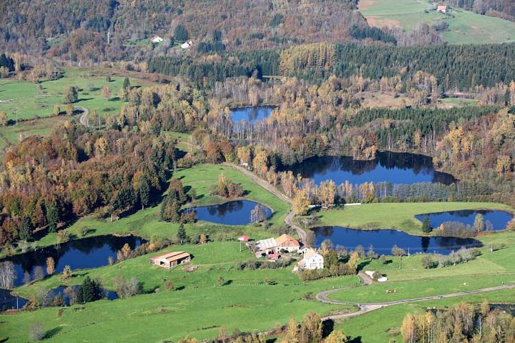 Circuit VTT n°49 - Les Monts du Breuchin - Vosges du sud
