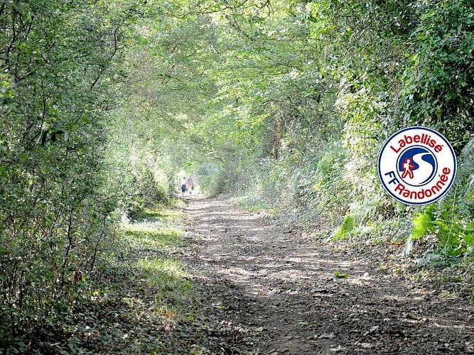 Sentier de Boudet - BEAULIEU SOUS LA ROCHE (85)