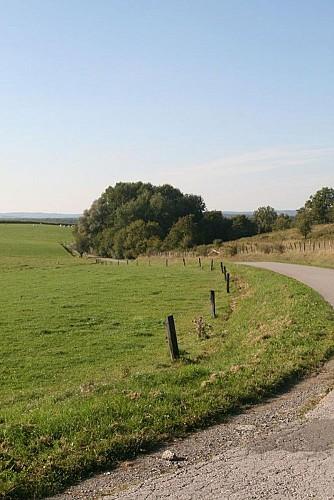 Circuit vélo autour de Rochefort