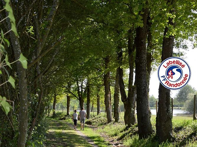 Sentier de Borie - SAINT GEORGES DE POINTINDOUX (85)