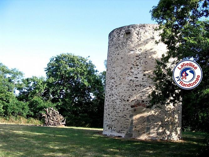Sentier des Moulins - LA CHAPELLE HERMIER (85)