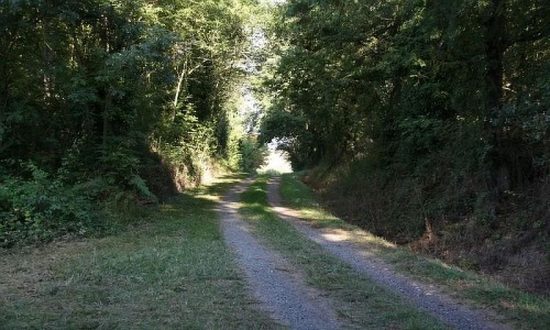 Chemin des Puechs en Assou-Fauch