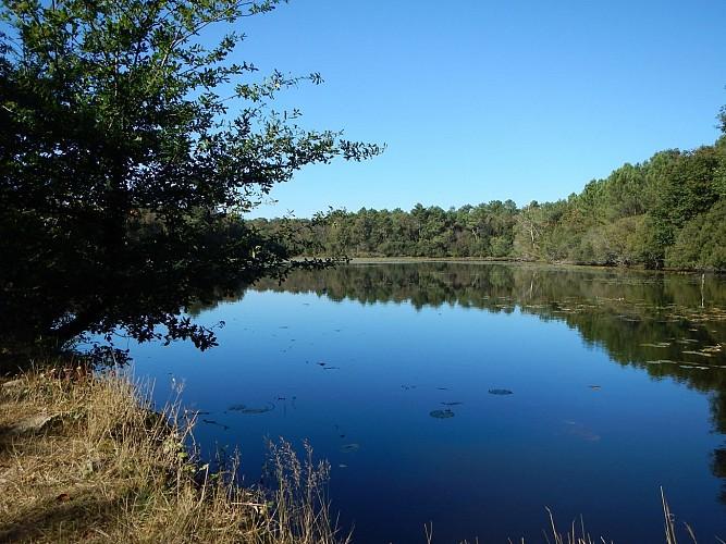 Circuit des deux rivières, Saint Gravé