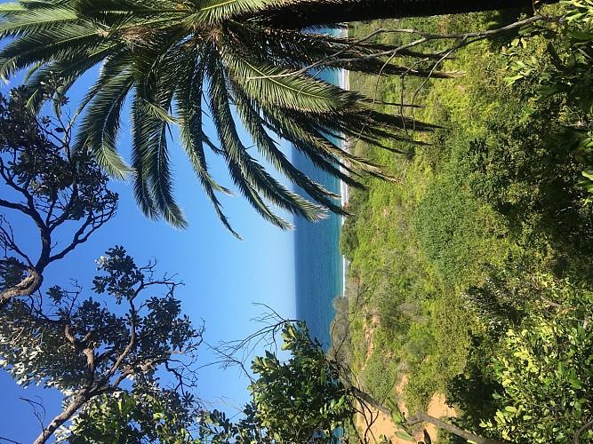 Palm Beach To Lighthouse