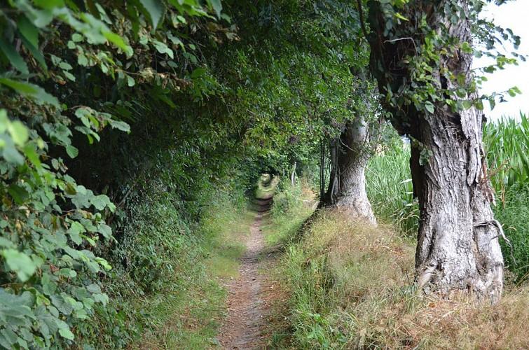 Sentier des 4 paroisses