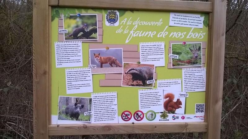 La faune locale