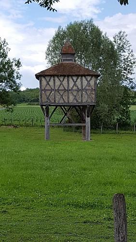 Sur les traces d'Adélaïde d'Orléans