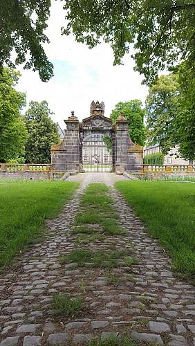 Allée d'accès au Château d'Effiat sur la randonnée Sur les traces des lavandières