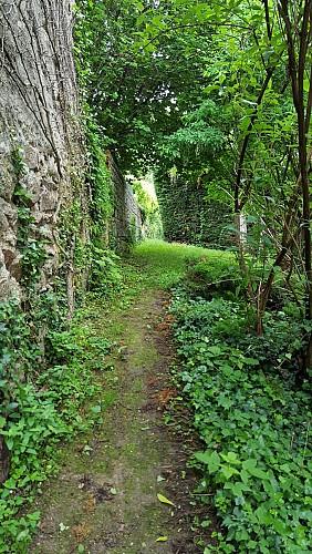 Sentier étroit au départ de la Randonnée Entre Limagne et Combrailles