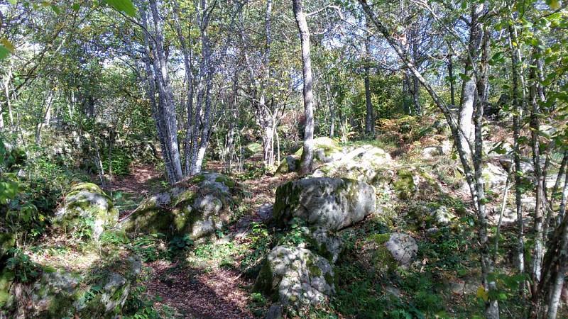 Randonnée VTT Le Puy de la Nugère