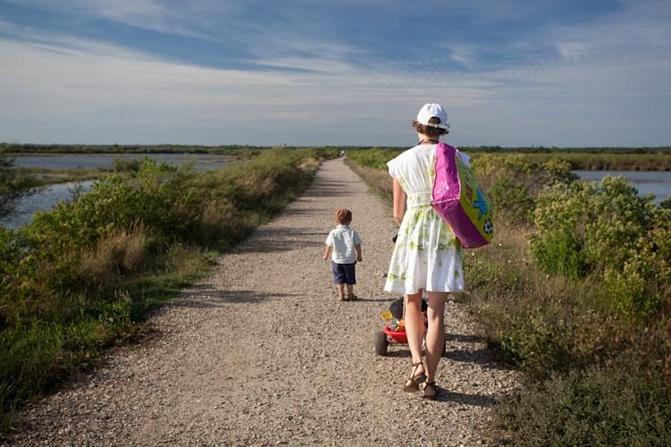 Randonnée pédestre sur le Domaine de Certes à Audenge sur le Bassin d'Arcachon 