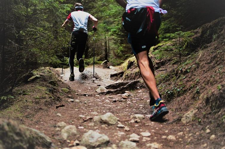 Der Crosscountry Laufweg  (Trail) in Saint Pierre les Nemours