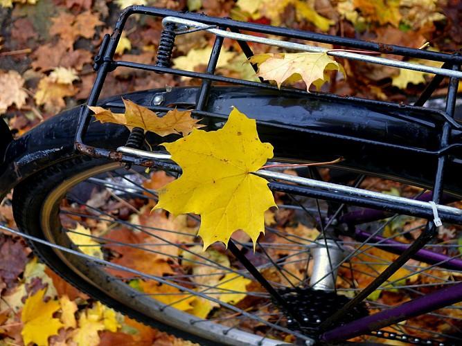 Un deux roues s'il vous plaît - fietstocht 8