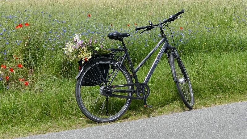 Un deux roues s'il vous plaît - fietstocht 9