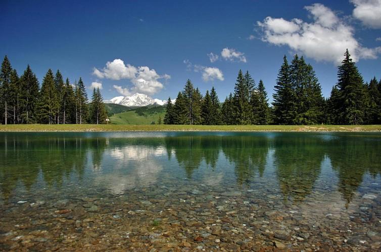 Lac du Mont-Lachat - Crest-Voland