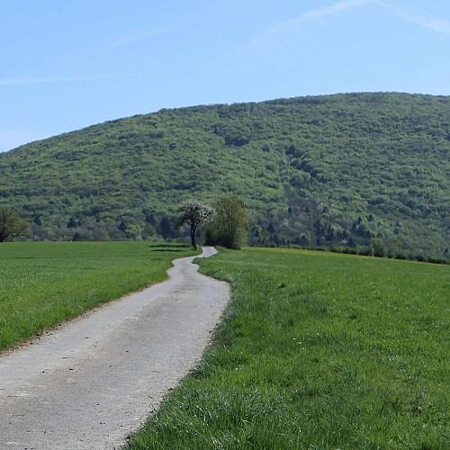 La montagne des princes depuis Droisy