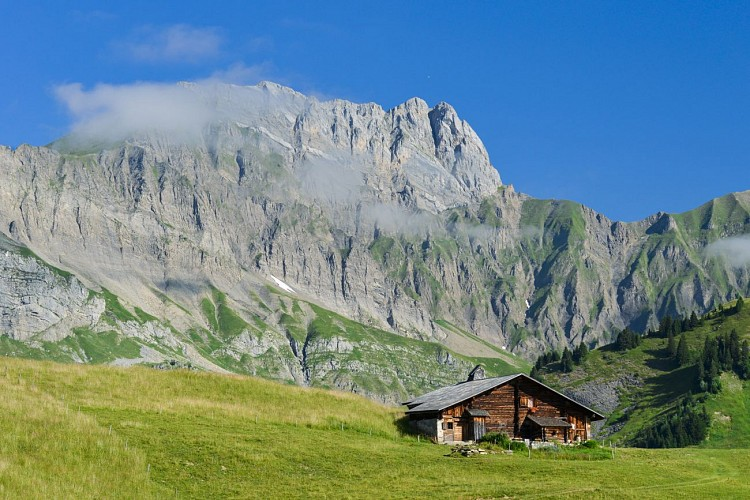 Les Chalets d'Alpage