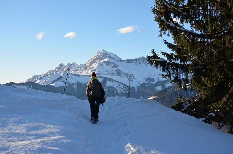 Abstieg der Mont-Lachat n°9