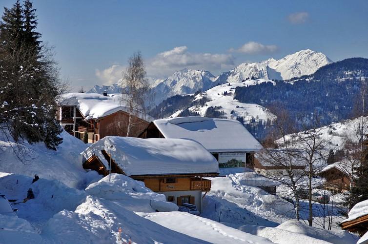 Von Dorf zu Dorf : Crest-Voland / Le Cernix n°7