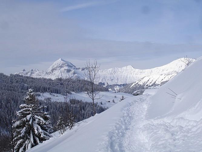 Le Mont-Rond n°4