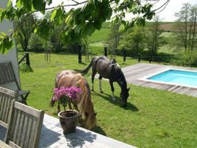 Au fil des Canaux : de Waudrez (Binche) à Bornival (Nivelles) à cheval