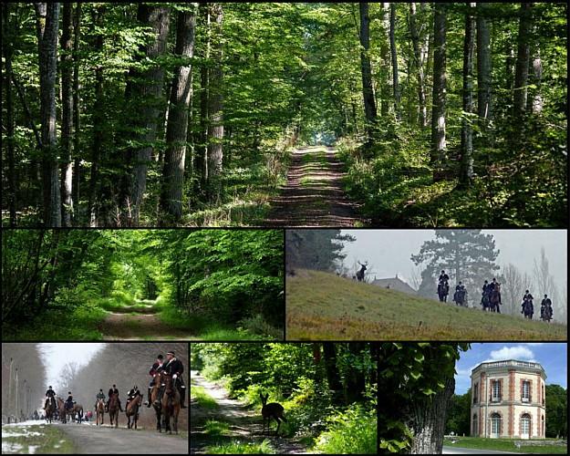 En forêt de Dreux, départ Montreuil