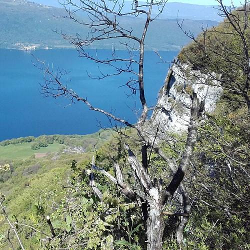 lac du Bourget et Hautecombe depuis le Mont Corsuet