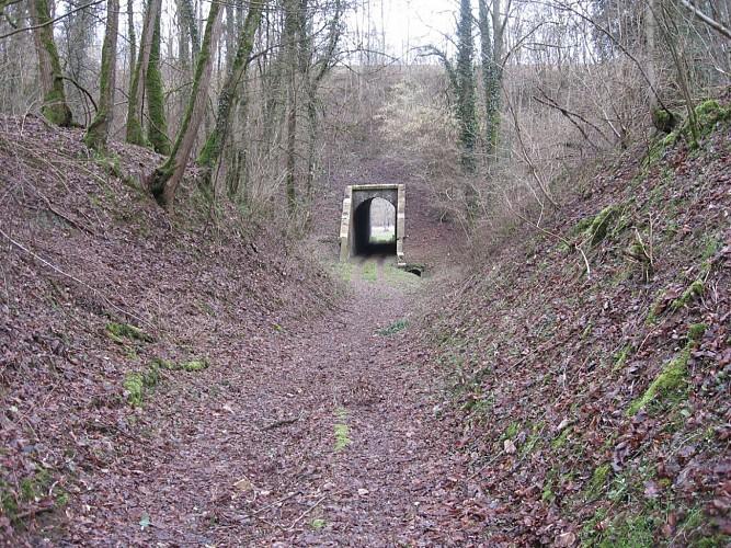 29.Port-sur-Saône.Moulignon.Passage sous voie Paris-Mulhouse.Plus d'issue.Barré par déviation.