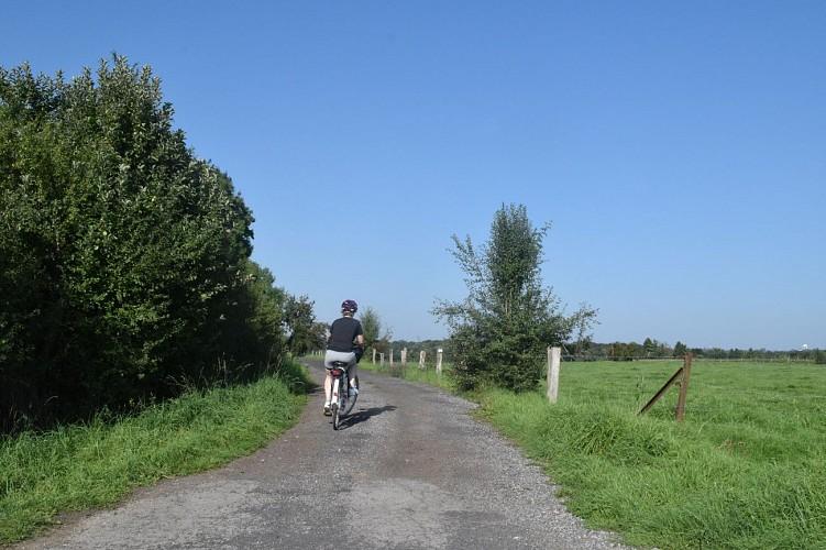 """Boucle Gallor n°8 """"sur les traces des Romains"""""""