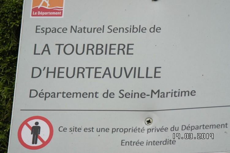 Seine Maritime  Heurteauville carte 1911 OT Forest de Brotonne
