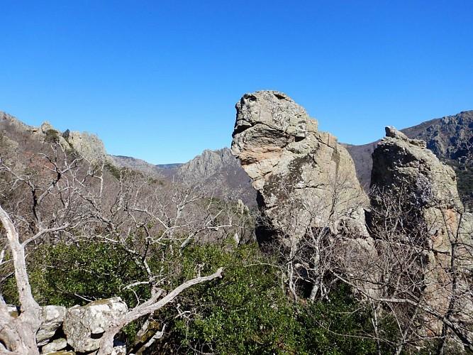 Gorges d'Heric vues du Col du Renard