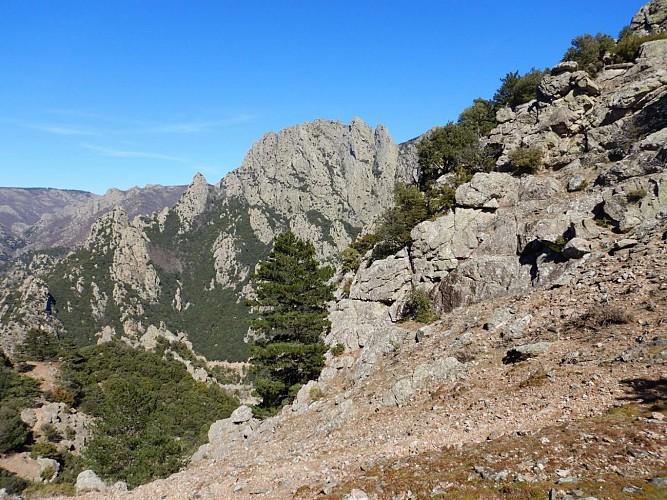 Le Caroux vu du Col de Roujas