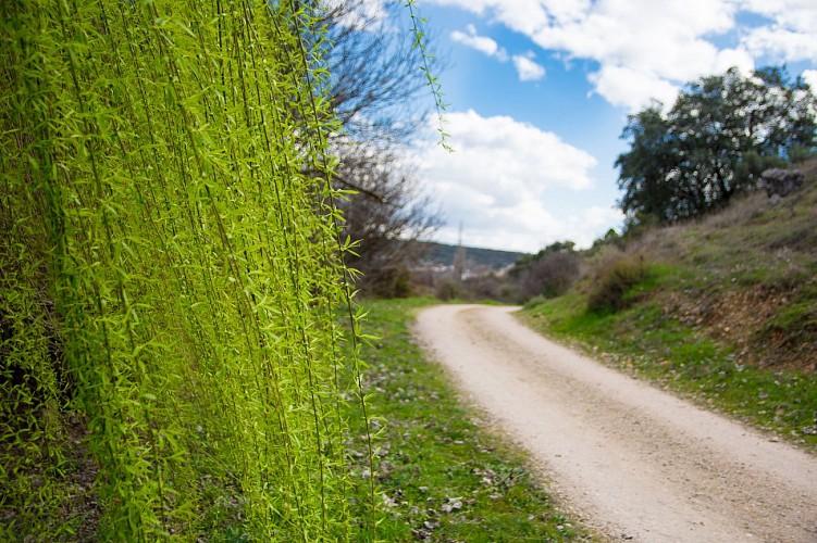 """Itinéraire rando """"La Carraire du bois de Gierre"""""""