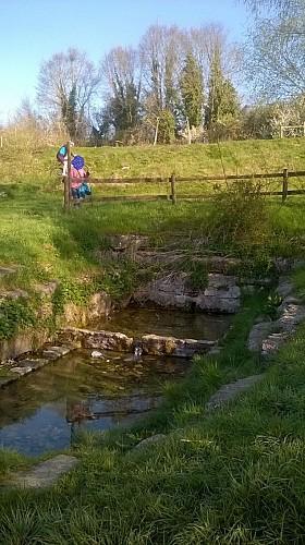 Source de la Bernon