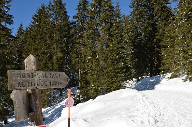 Rund um Mont-Lachat n°11