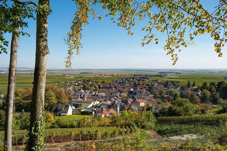PR 134 - Boucle d'Avize village