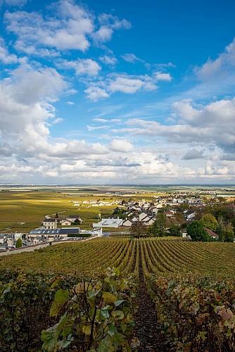 PR 134 - Circuit d'Avize village