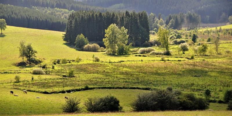 La grande promenade paysagère de la Rosière (17 km) 86