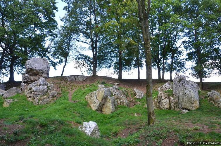 De Witte Stenen van Mousny