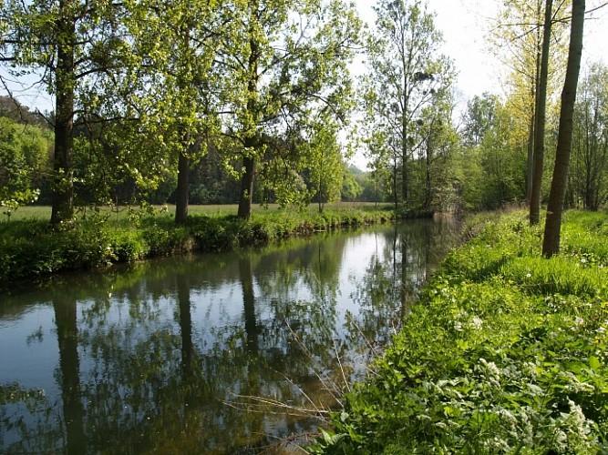 Promenade des Chevreuils - BR 01 - 10
