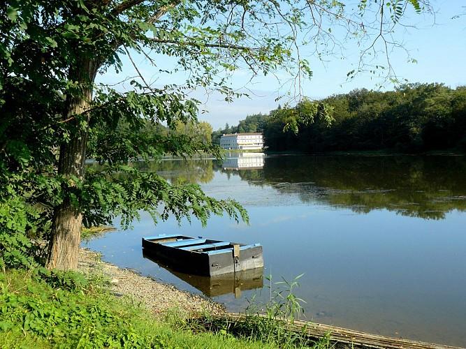 Circuit du lac de l'Angle Guignard - Chantonnay