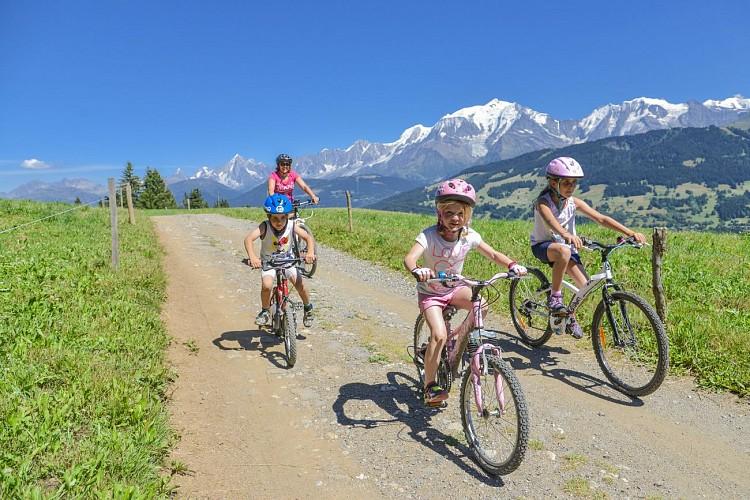 Combloux mountain-biking area: Jaillet – Les Brons (N°31)