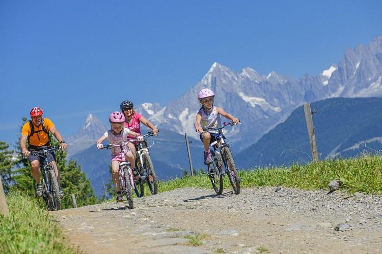 Les Portes du Mont-Blanc mountain-biking area: La Balancerie (n°14)