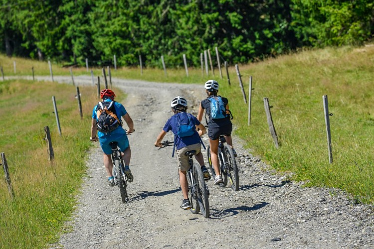 "Les Portes du Mont-Blanc mountain-biking area - itinerary 12 : ""Salles"" Loop"