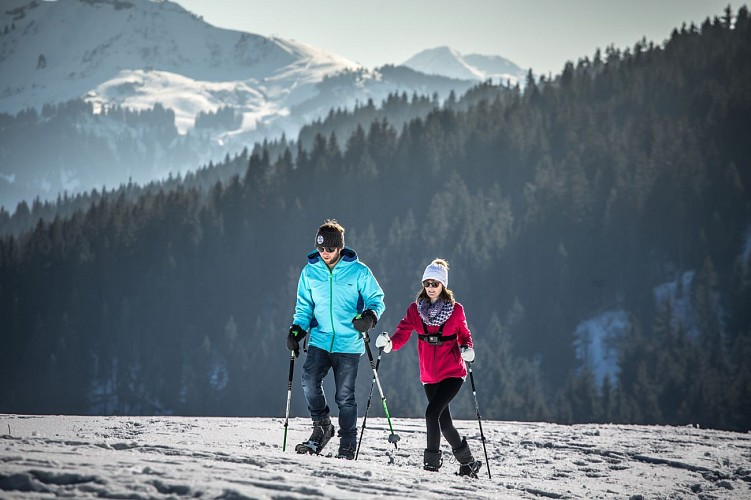 Snowshoes itinerary: le Vernay