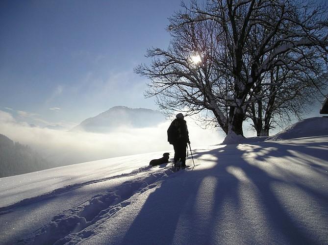 Itinerario racchette da neve : les Granges