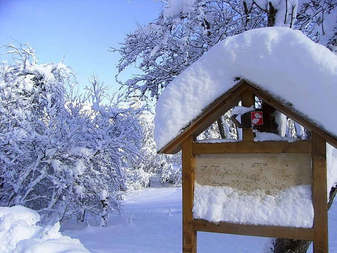 Snowshoes itinerary: les Montavus