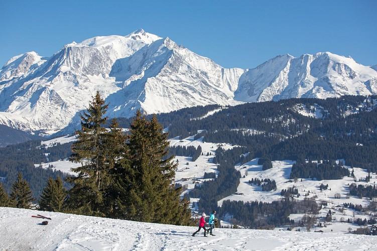 Itinerario racchette da neve : Liaison Combloux/Cordon
